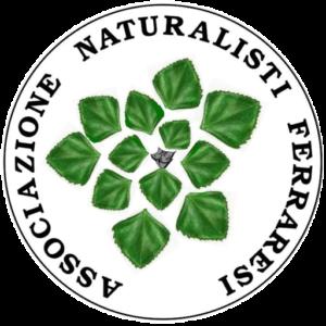 cropped-logo-A.N.F._quadr_trasp.png