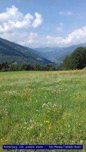 Rothenburg (D) - prateria alpina - Maresa Trabaldo Pezzin
